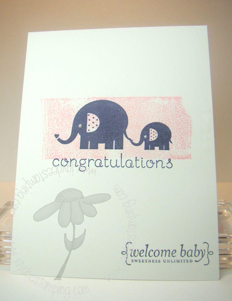 Babyelephant (2)