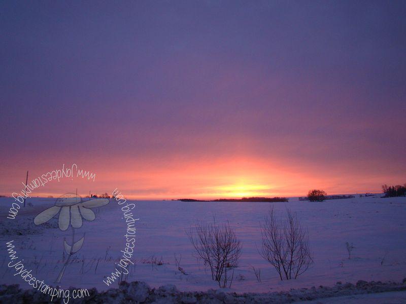 Minnesotawintermorning