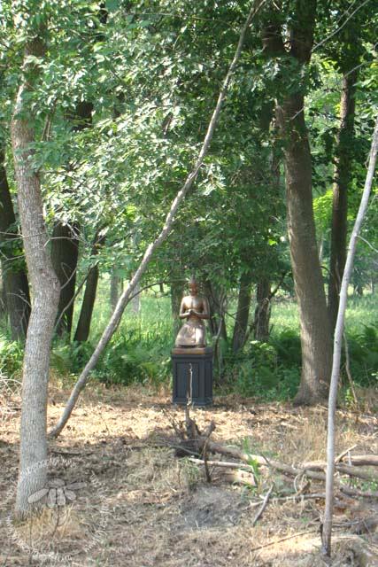 Buddha (1 of 1)