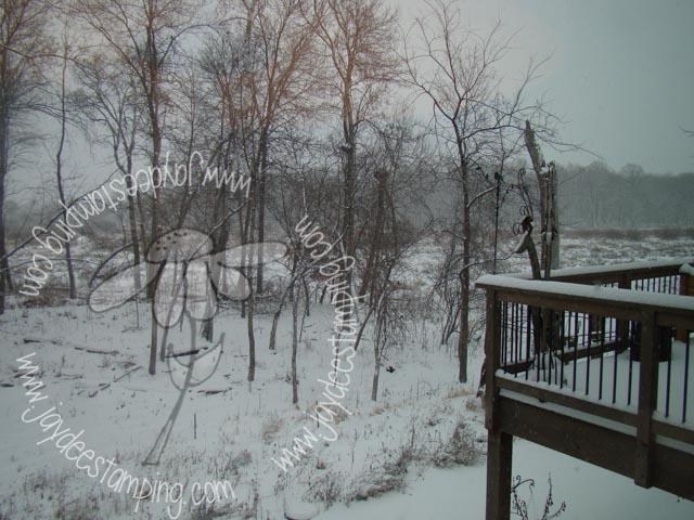 Snowywetland