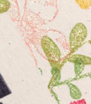 petite petals closeup
