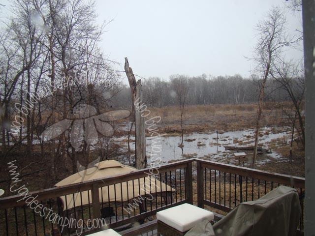 Wet wet wetland
