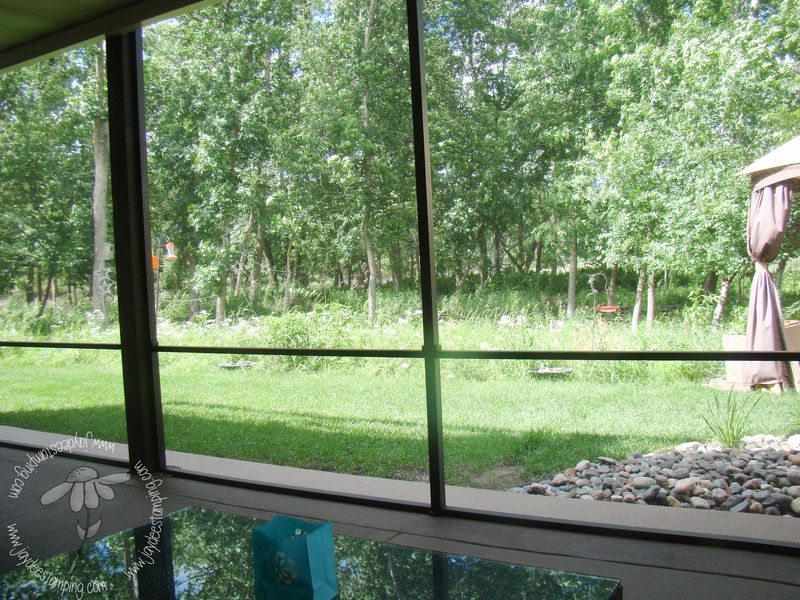 Screened in porch facing north