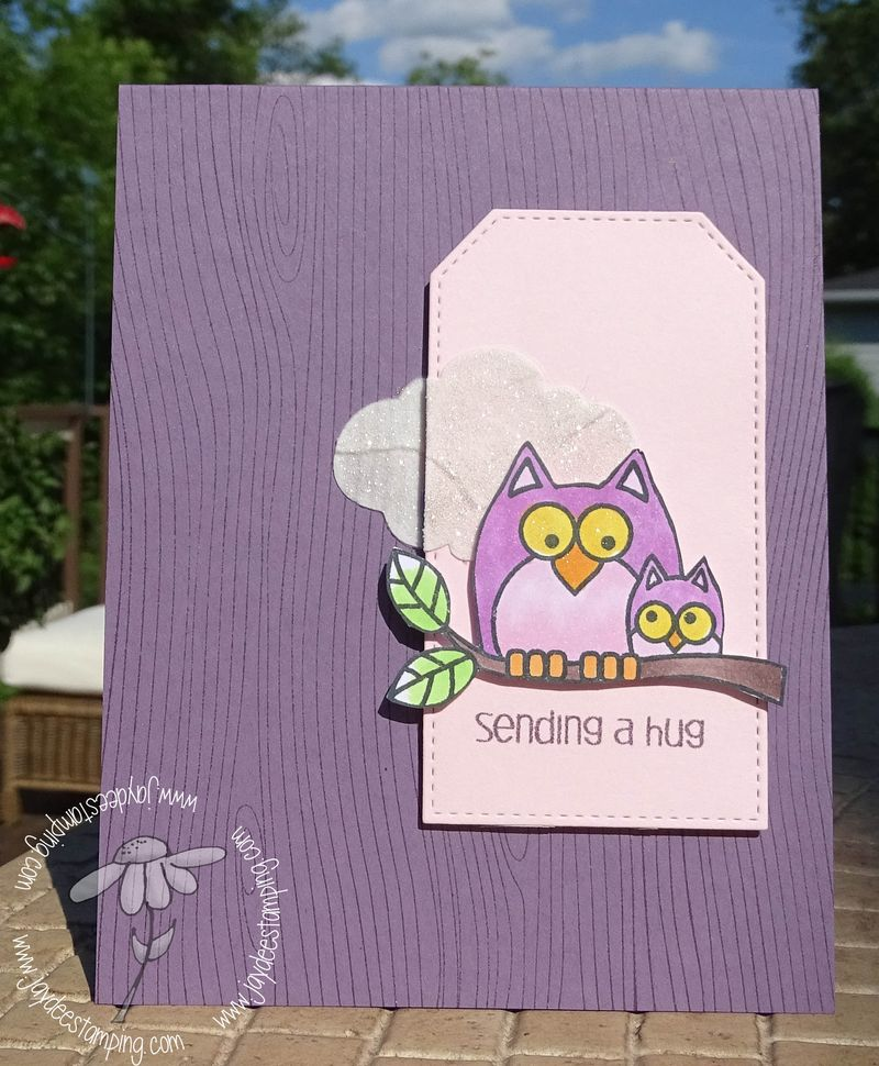 Owl purple (1 of 1)