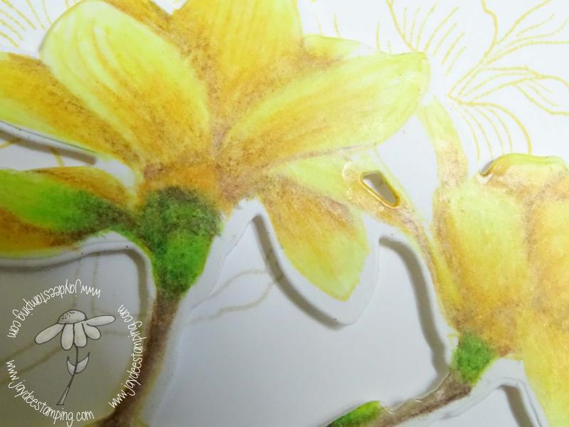 Build a Flower Magnolia Closeup (1 of 1)