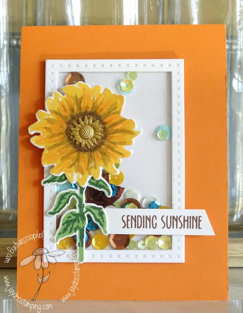 Sending Sunshine Shaker (1 of 1)