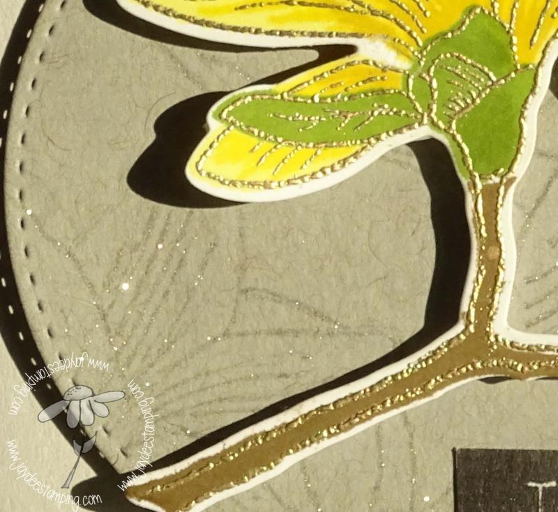 Magnolia closeup (1 of 1)-2