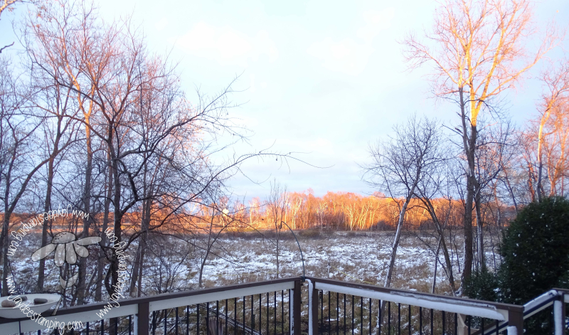 Sunset over the wetland (1 of 1)-2