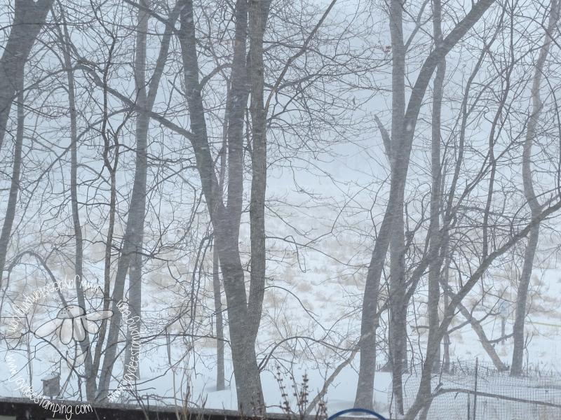 Snowstorm (1 of 1)