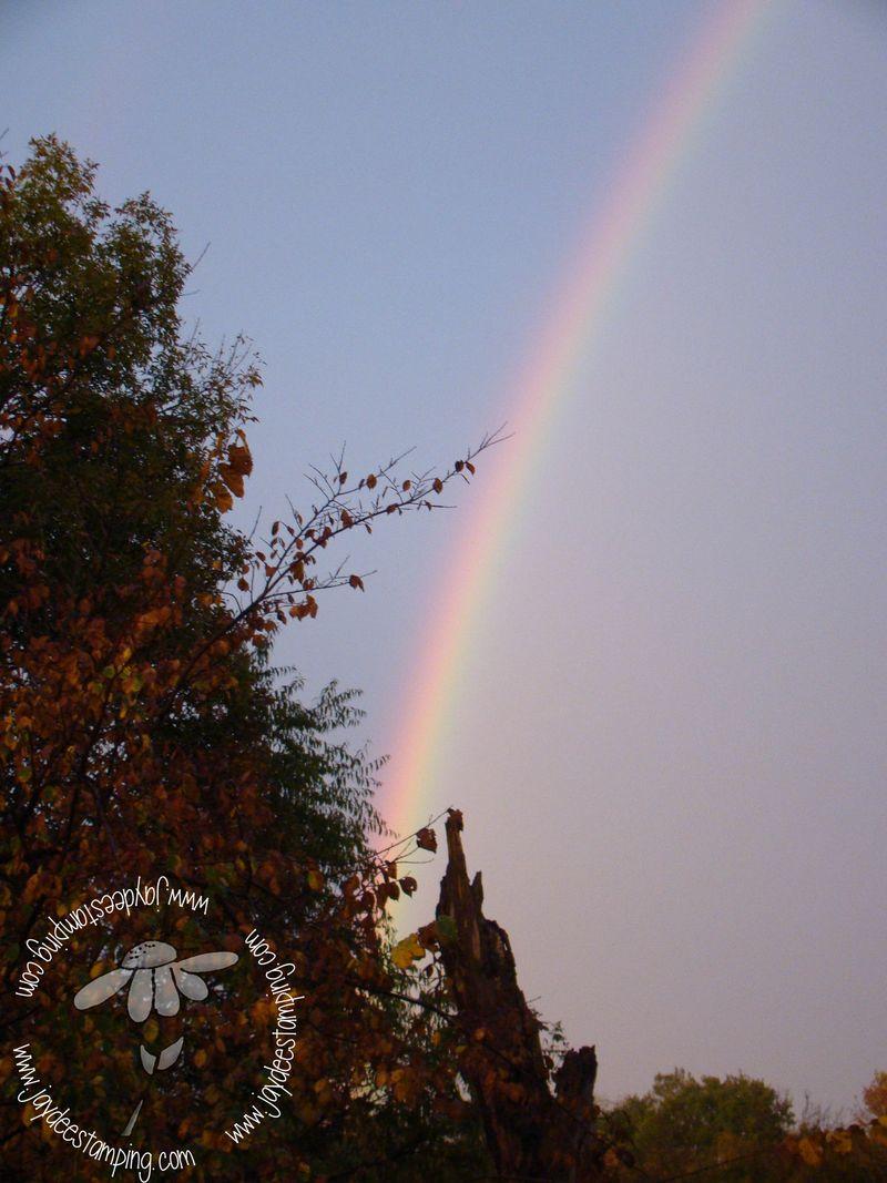 Rainbow2 (1 of 1)