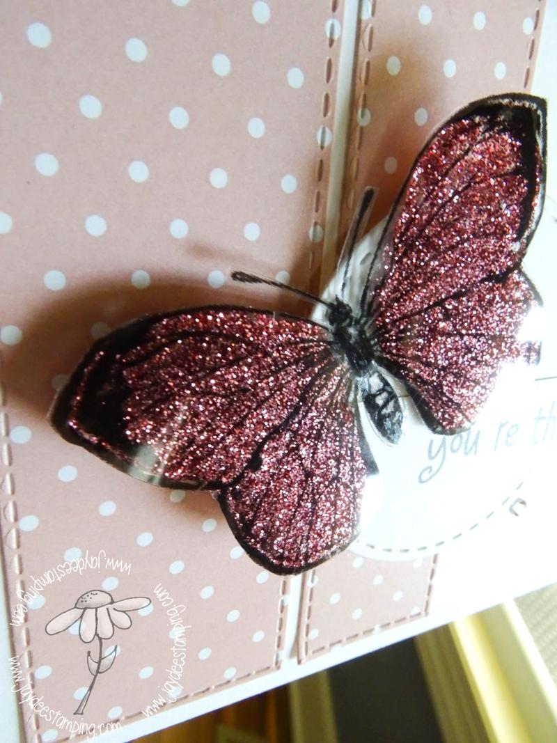 Lolas butterfly closeup (1 of 1)-2