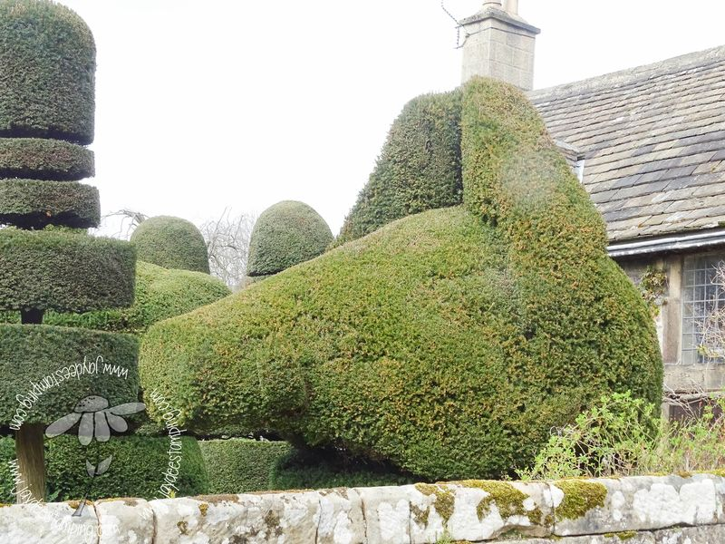 Topiary (1 of 1)