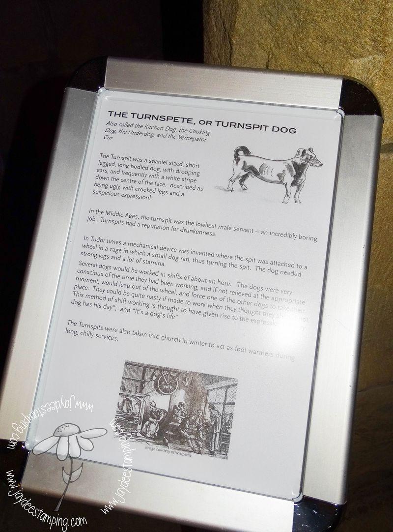 Haddonhalldog (1 of 1)