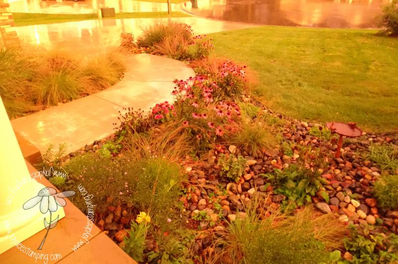 Sepia garden (1 of 1)