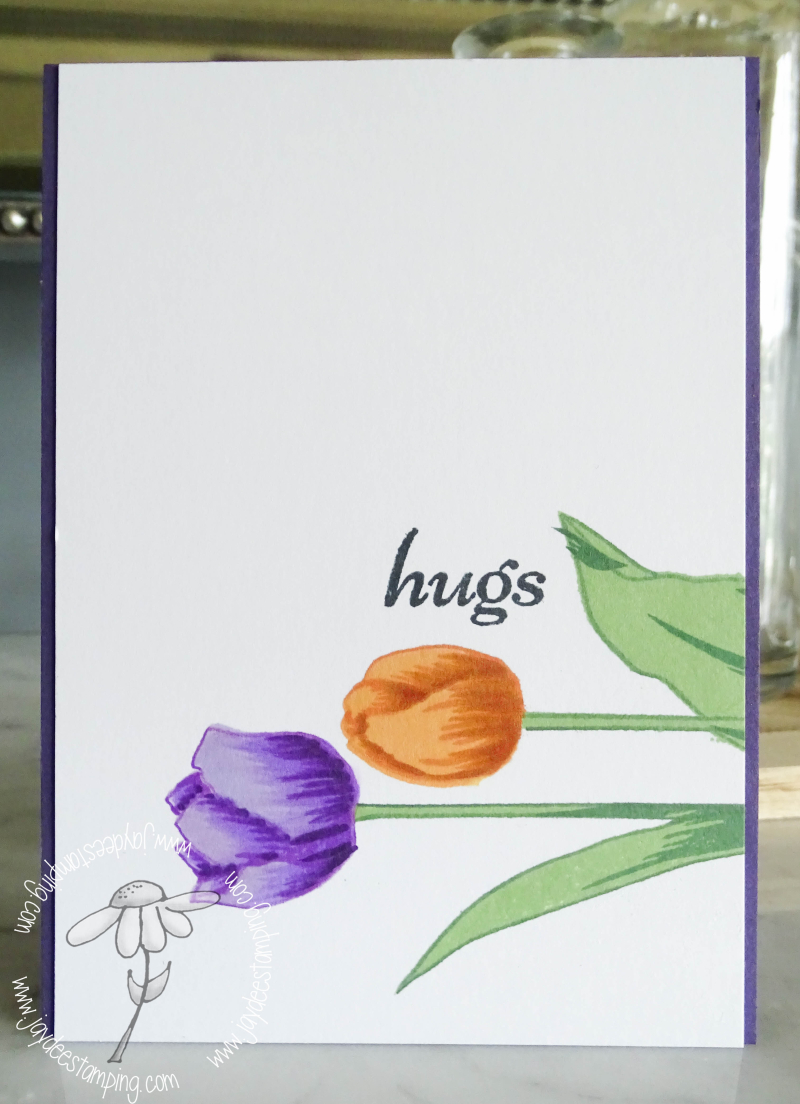 Tulipscase (1 of 1)-2