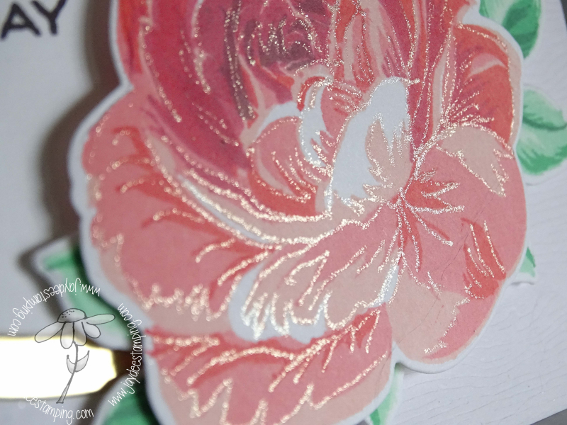AECP Build a Rose Clean and Simple Boutique Cards Closeup (1 of 1)