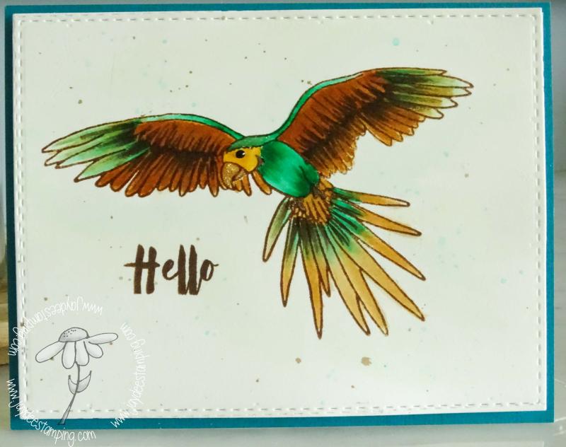 Parrot paradise altenew (1 of 1)