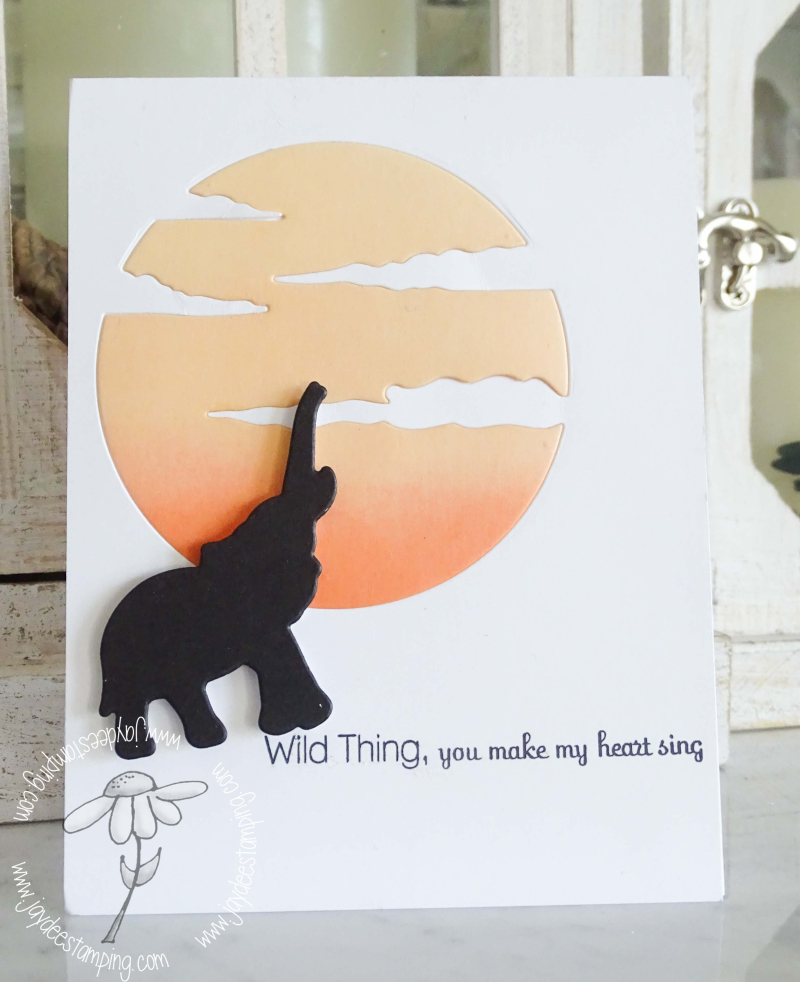 Wild Thing  (1 of 1)