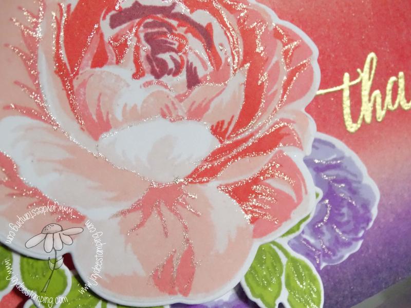 Muse rose closeup2 (1 of 1)