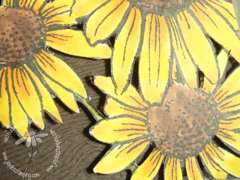 Stampendous Rustic closeup (1 of 1)
