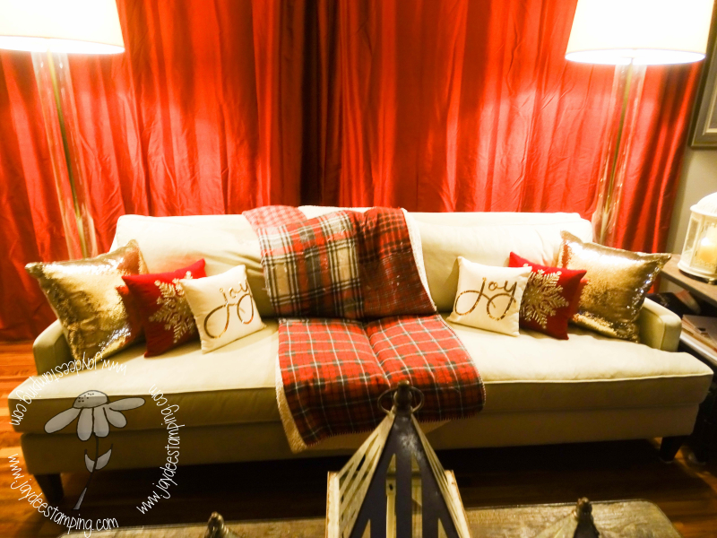 Cushions (1 of 1)