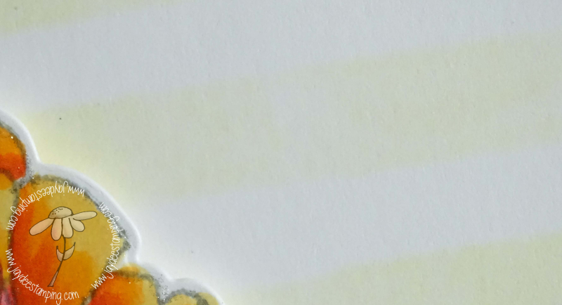 Freesia closeup (1 of 1)