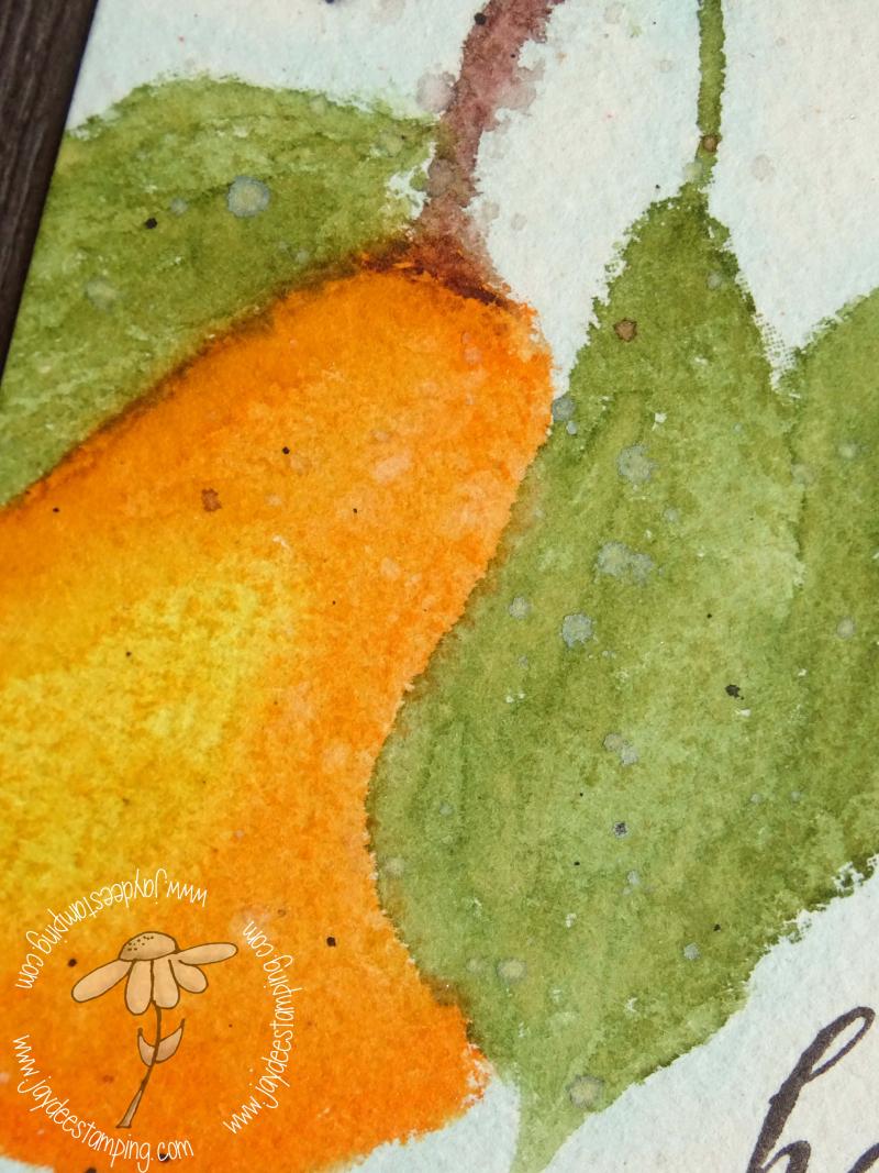 Perfect Pear Closeup (1 of 1)