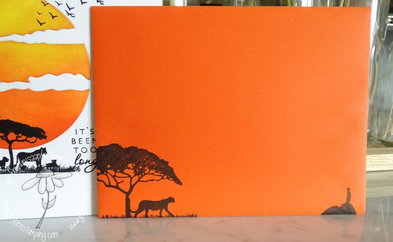 Safari its been too long envelope (1 of 1)