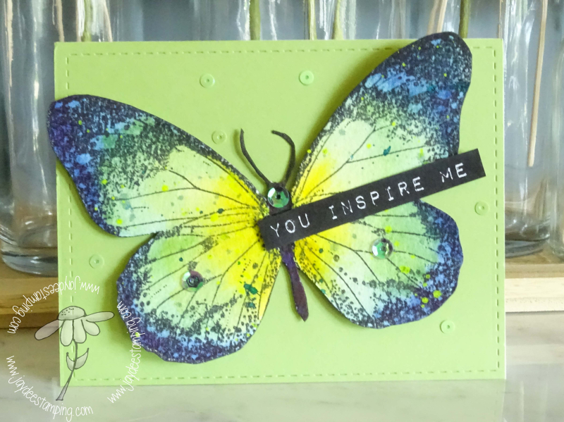 Indigo Blue Butterfly CTDOWN (1 of 1)