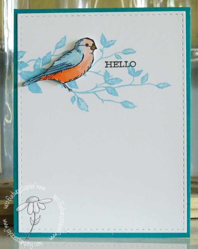 Freeasabird (1 of 1)-3