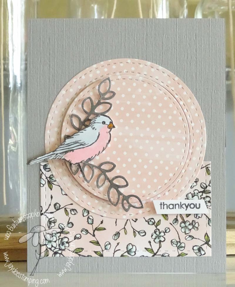 Freeasabird (1 of 1)-5