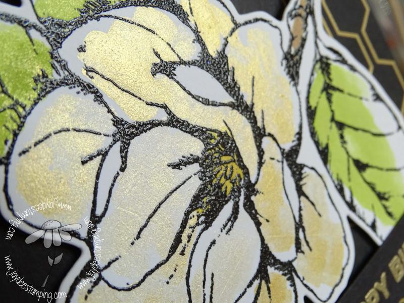Good Morning Magnolia closeup (1 of 1)-3
