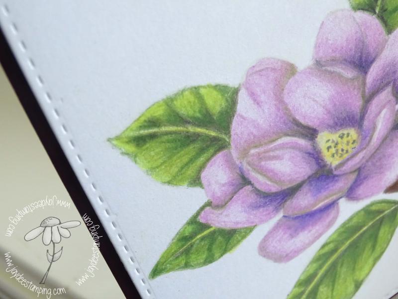 Good Morning Magnolia closeup (1 of 1)-2