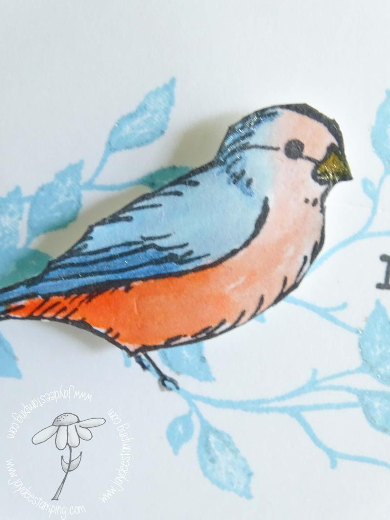 Freeasabird (1 of 1)-2