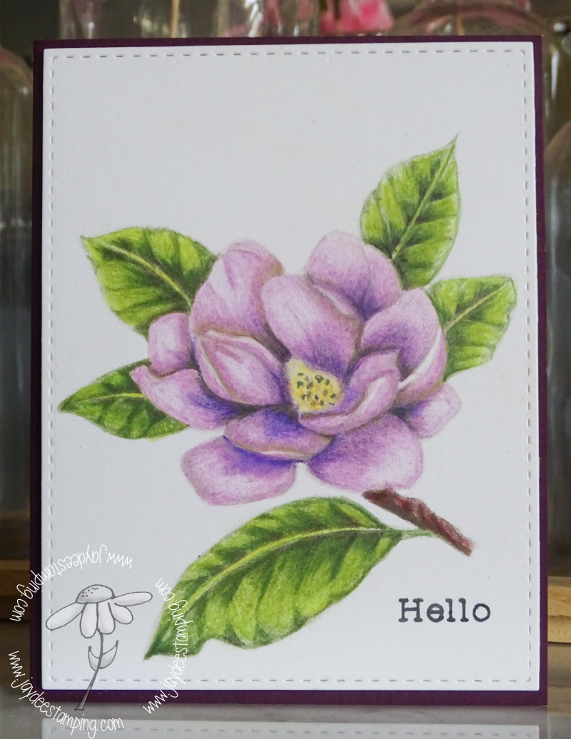 Good Morning Magnolia (1 of 1)-3