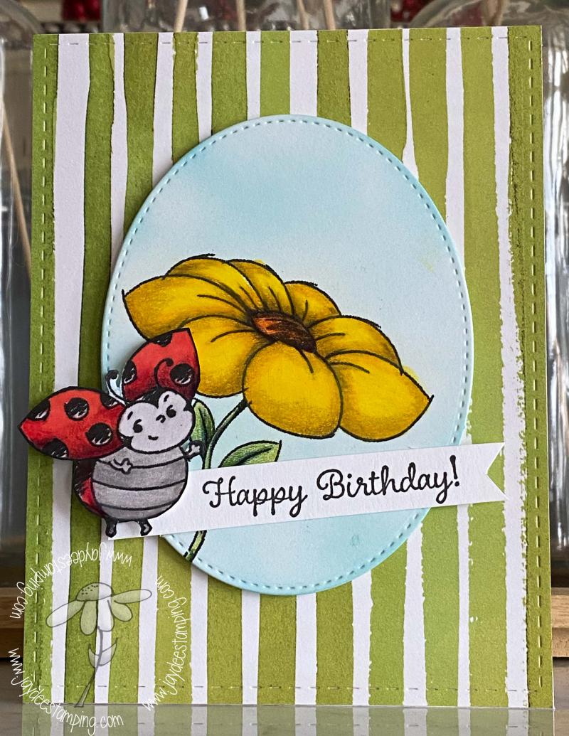 Little Ladybug (1 of 1)