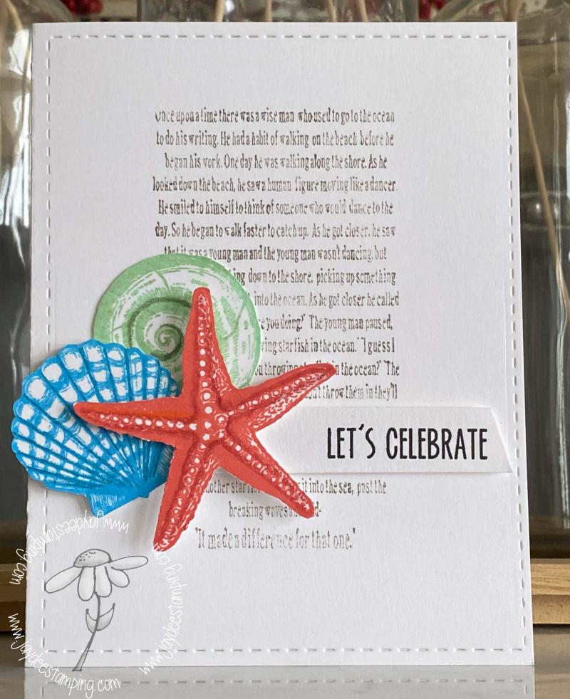 Celebrate Shells (1 of 1)