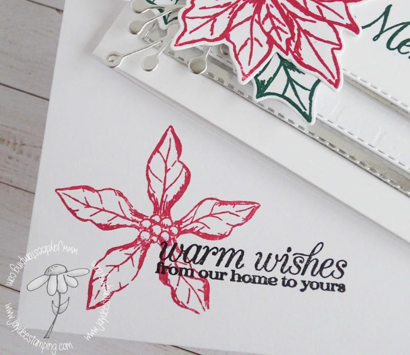 Poinsettia Petals Envelope (1 of 1)