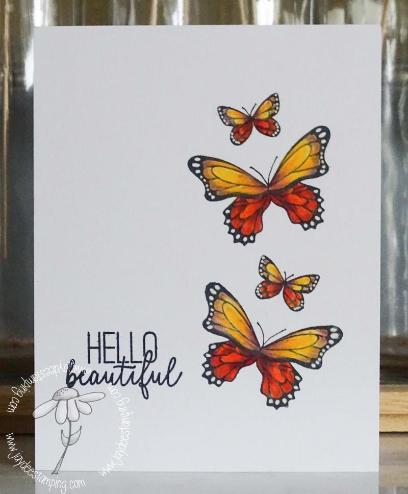 Butterfly Gala (1 of 1)-6