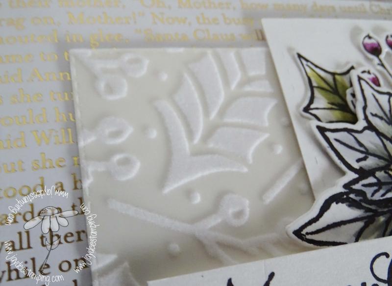 Poinsettia Petals 510 closeup (1 of 1)