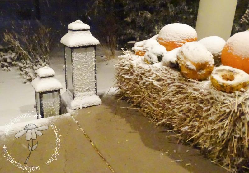 Snowfall (1 of 1)