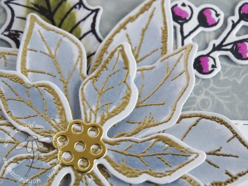 Poinsettia Petals closeup (1 of 1)-3